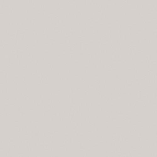 Gris Nube 2189