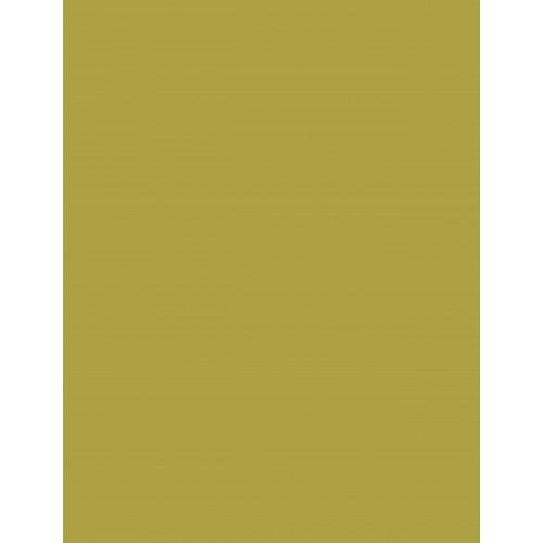 Olive 2224